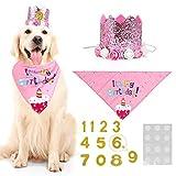 Wove, cappello a forma di corona con fiore rosa, per cani e gatti, per feste di compleanno, per animali domestici, feste di compleanno