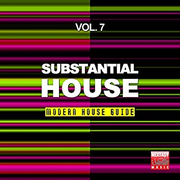 Substantial House, Vol. 7 (Modern House Guide)