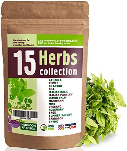 15 Culinary Herb Seeds Variety USA Grown for Indoor or Outdoor Garden Heirloom and Non GMO Basil product image