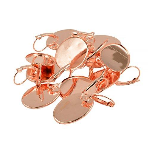 freneci 12 Unids/Lote Leverback Gancho de Alambre de Pendiente Francés Ajuste en Blanco Resultados de Bricolaje - Oro rosa, tal como se describe