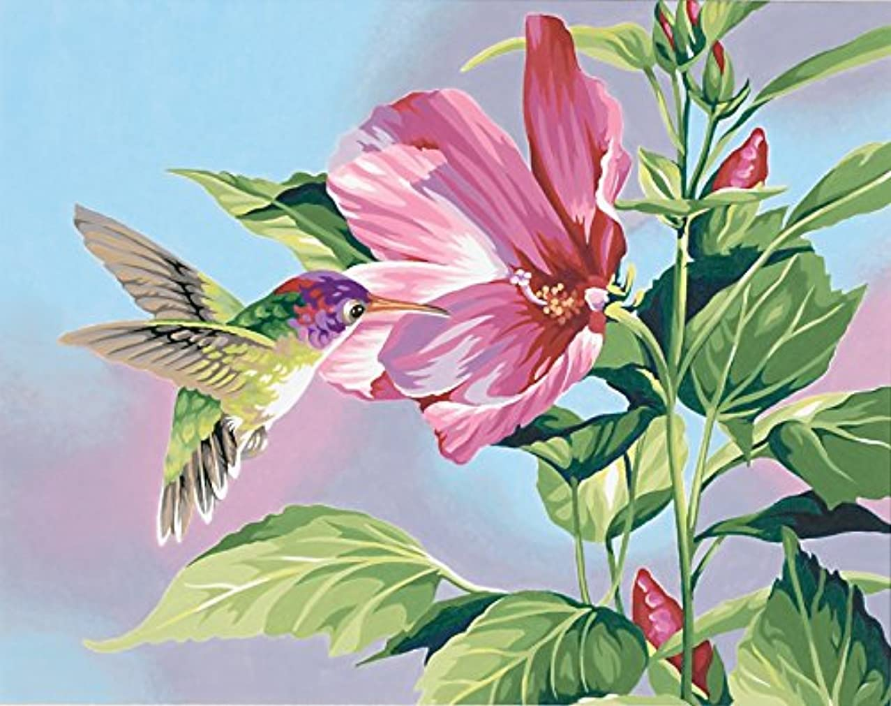 Dimensions Hibiscus Hummingbird Paint by Number for Adults, 14'' W x 11'' L