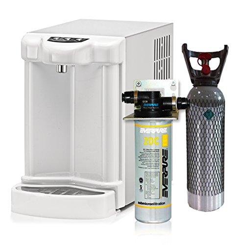 Depuratore Acqua ForHome Erogatore Fredda Gasata Ambiente Refrigeratore Gasatore Everpure E 4Kg-Co2 Esterni