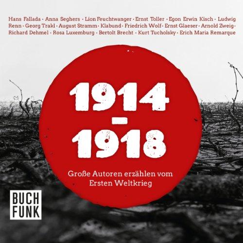 1914-1918: Große Autoren erzählen vom Ersten Weltkrieg Titelbild