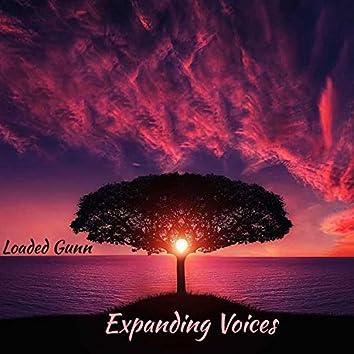 Expanding Voices