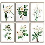 MONOKO® Set di 6 poster per soggiorno, camera da letto, set di immagini da parete, senza cornice (fiori, bianco, farfalle, 6 x A4 (21 x 29,7 cm)