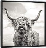 MJEDC Highland Kuh Bild Leinwand Druck, mit Schwarzer