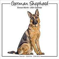 German Shepherd Studio 2021 Wall Calendar