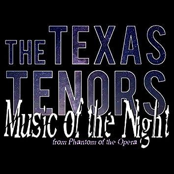 Music of the Night from Phantom of the Opera