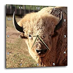 3dRose dpp_92633_1 White Buffalo Wildlife Santa Fe New Mexico Julien McRoberts Wall Clock, 10 by 10-Inch