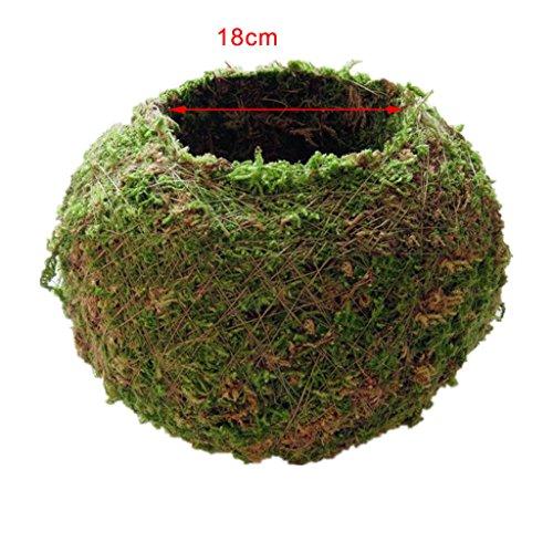 LOVIVER Maceta Verde Macetero Natural Tejido Musgo Bola Bonsái Jardín Decoración Flor Recipiente Pote Decoraciones para El Hogar (6 Cm, 9 Cm, 12 Cm, 15 Cm, 18 - Verde, 15cm