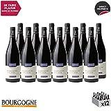 Bourgogne Côte d'Or Rouge 2017 - Domaine Cauvard - Vin AOC Rouge de Bourgogne - Cépage Pinot Noir - Lot de 12x75cl - 14.5/20 Bourgogne Aujourd'hui