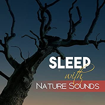 Sleep with Nature Sounds – Calming Nature for Deep Sleep. Well Dreaming, Easy Listening, Peaceful Mind