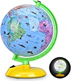 8 Inch Illuminated World Globe for Kids, Desktop Globe LED Night Light with Stand, Colorful, Easy-Read, Battery Powered, Globe Map Learning Tool Educational Gift for Students