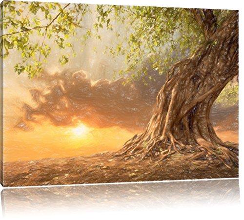 Pixxprint Verwurzelter starker Baum als Leinwandbild | Größe: 100x70 | Wandbild| Kunstdruck | fertig bespannt