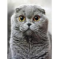 ダイヤモンド絵画動物猫5DDIYフルラウンドダイヤモンド刺繡キットラインストーンクロスステッチ装飾モザイク画像ギフト