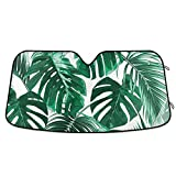YYZZH Palm Leaf Monstera Car Windshield Sun Shade Block UV Rays Sun Visor Protector Accordion Folding Sunshade Keep Vehicle Cool and Damage Free, Easy to Use, Fits Windshields of Various Sizes