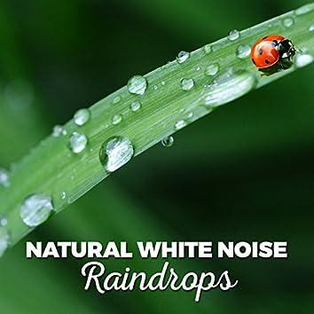 Natural White Noise: Raindrops