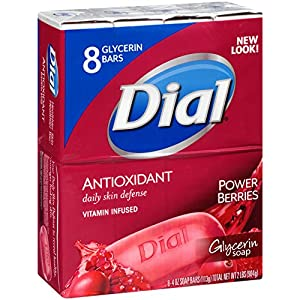 Dial Skin Care Bar Soap, Power Berries, 4 Ounce, 2 Packs of 8 bars
