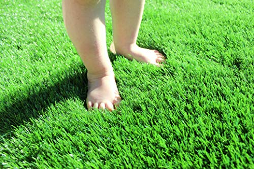 (6.5ft x 12 ft) Artificial Grass for Dogs Pee Pads Artificial Synthetic Grass shag Turf Realistic Indoor Outdoor Landscape Fake Astro Turf Dog Mat Pad Synthetic Mat Rug Carpet for Garden Backyard