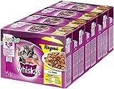 Whiskas Junior Ragout – Geflügel-Auswahl in Gelee – Für Katzen von 2 - 12 Monaten – 4 x 12 Portionsbeutel à 85g