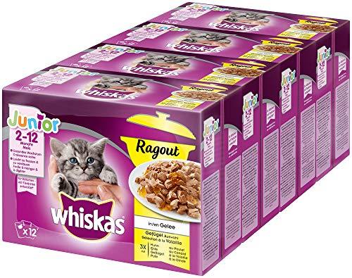 Whiskas Junior Ragout in Gelee – Zarte, saftige Katzennahrung in verschiedenen Geschmacksrichtungen – Für Katzen von 2 - 12 Monaten
