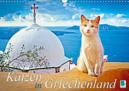 Katzen in Griechenland (Wandkalender 2019 DIN A3 quer): Katzen im Urlaub liegen in der Sonne, dösen im Lokal, schmusen am Strand (Monatskalender, 14 Seiten )