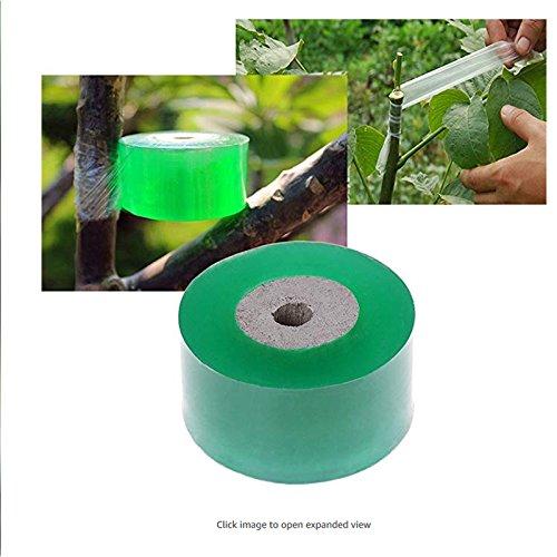Tofree Rolle Veredelungsband Gartenbedarf Obstbaum Zucht Zubehör 3cm Veredelungsband Selbstklebeband Veredelungsband für Apfelpfirsichbaum Birnenbäume grün grün