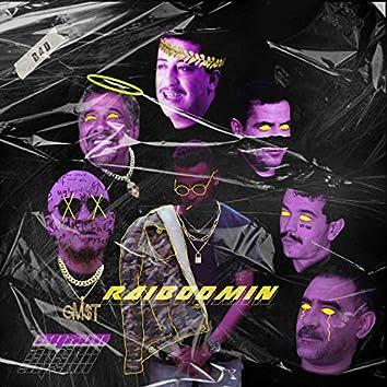 Raiboomin