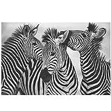 BFSA Cuadro de Cebra en Blanco y Negro, Pintura en Lienzo Dulce, Arte de Pared, impresión, póster de Animal Encantador, decoración Moderna del hogar (con Marco)