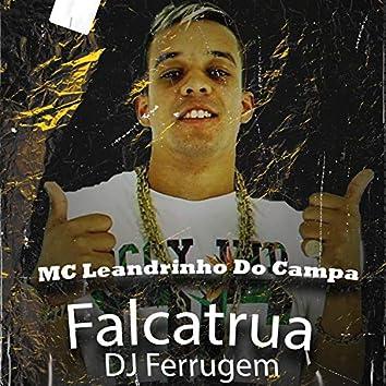 Falcatrua