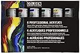 Principal Professional 6 Piece Heavy Body Acrylic Set