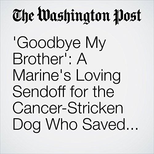 'Goodbye My Brother': A Marine's Loving Sendoff for the Cancer-Stricken Dog Who Saved Him copertina