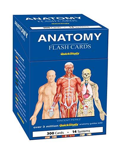 Anatomy (Quickstudy)