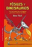 Fósiles y dinosaurios: Tras las huellas de los dragones y de otras criaturas increíbles: 31 (Las Tres Edades / Nos Gusta Saber)