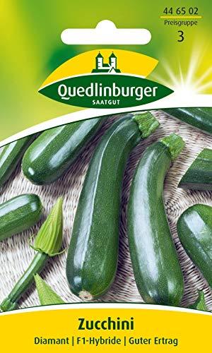 Zucchini, Diamant F1 Quedlinburger Saatgut Samen 446502