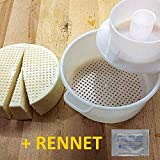 Edam Hard Cheese Mold With Follower Large For 2.2lbs / 1kg. | Cow Goat Rennet Milk | Cheesemaking from Cow and Goat Milk. Cheese making supplies by QG group