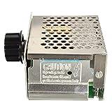 Bob Temple322000 Module d'alimentation électrique réglable Appliquer Contrôleur électronique de Vitesse de Moteur de gradateur...