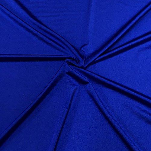 Lycra Shiny Milliskin Nylon Spandex Fabric 4 Way Stretch 58' Wide Sold by The Yard Many Colors (Royal Blue)