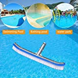 Keshiwo 8in Swimming Pool Wall Brush High Cleaning Efficiency Tools For Pond Spa Spring,Health Household Home Kitchen All-Purpose Household cleaning supplies