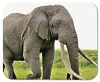 ゲーミングマウスパッド象の背景カスタマイズされた長方形滑り止めラバーマウスパッドゲーミングマウスパッド