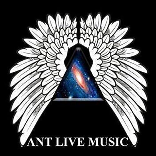 Ant Live