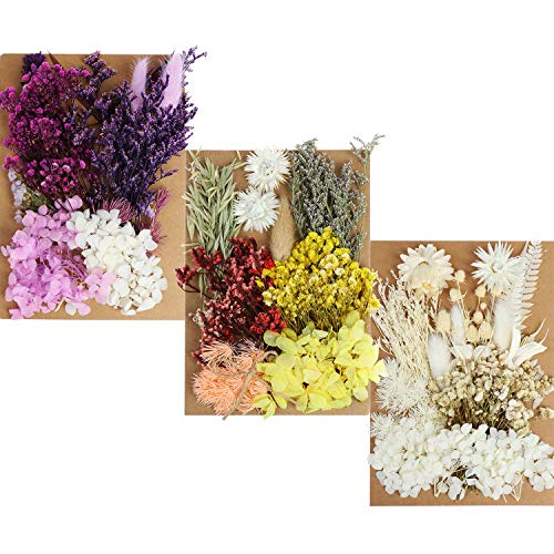 131pcs DIY Dried Flowers Daisies Leaves, Hydrangeas, Multiple Natural Pressed Flowers Colorful Decorative Dried Flowers for DIY Craft (Color 1)