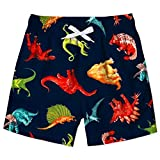 Little Boys Quick Dry Swimming Trunks Outdoor Casual Surf Beach Shorts Colourful Dinosaur 3D Printed Kids...