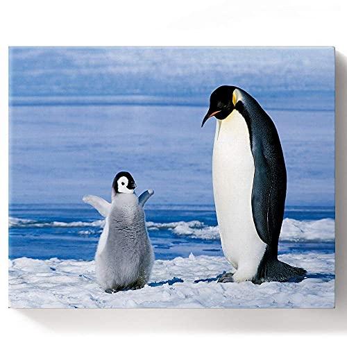Beaxqb Pintura por Números, Pingüino Lindo Pintura al óleo Kit con Pinceles y Pinturas, Pared LienzoArte decoración del hogar 40x50cmSin Marco