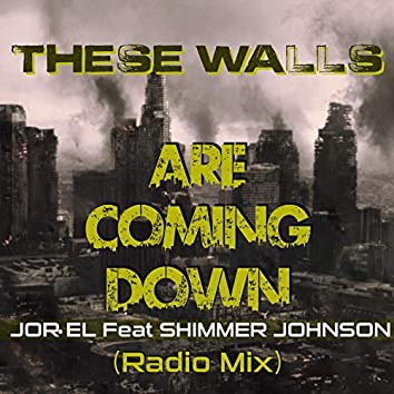 These Walls Are Coming Down (Radio Mix) [feat. Shimmer Johnson]