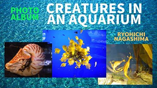 PHOTO ALBUM CREATURES IN AN AQUARIUM (English Edition)
