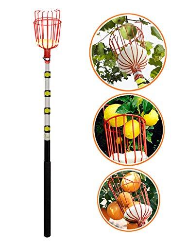 Outil pour la Cueillette des Fruits en Aluminium Ultra Léger avec Panier Pour les Pommes Poires etc, 4 mètres