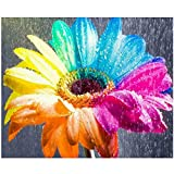 KTHOFCY 5D DIY Diamond Painting Kits for Adults Kids Rainbow Daisy Full Drill Embroidery Cross Stitch Crystal Rhinestone Paintings Pictures Arts Wall Decor Painting Dots Kits 15.7X11.8 in