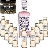 Gintonic - Gin terrestre Mistral 40 ° + 9London Esencia 'Ginger Ale '- (70cl + 9 20cl *) + Pot 20 rebanadas de limón amarillo que se secó.