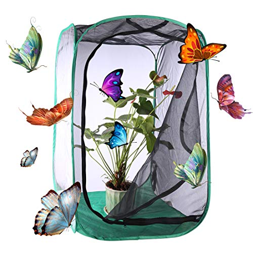 Haunen Schmetterlings- und Insektennetz, Pop-up Schmetterlinge Züchten Insekt Und Schmetterling Habitat Käfig Pop-up Schutz Käfig, 60 × 60 × 90cm